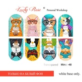 Lucky Rose Слайдер-дизайн Minic 48