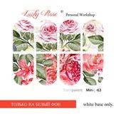 Lucky Rose Слайдер-дизайн Minic 63