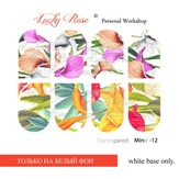 Lucky Rose Слайдер-дизайн Minic 12