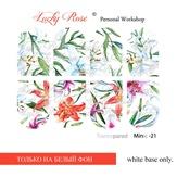 Lucky Rose Слайдер-дизайн Minic 21