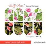 Lucky Rose Слайдер-дизайн Minic 6