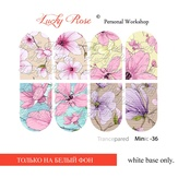 Lucky Rose Слайдер-дизайн Minic 36