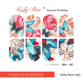 Lucky Rose Слайдер-дизайн Minic 60