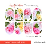 Lucky Rose Слайдер-дизайн Minic 54