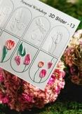 Lucky Rose Слайдер-дизайн 3D Slider-13
