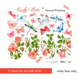 Lucky Rose Слайдер-дизайн Minic 35
