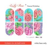 Lucky Rose Слайдер-дизайн Minic 56