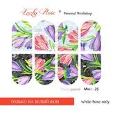 Lucky Rose Слайдер-дизайн Minic 25