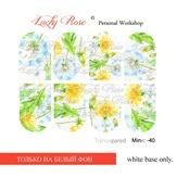 Lucky Rose Слайдер-дизайн Minic 40