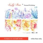 Lucky Rose Слайдер-дизайн Minic 39